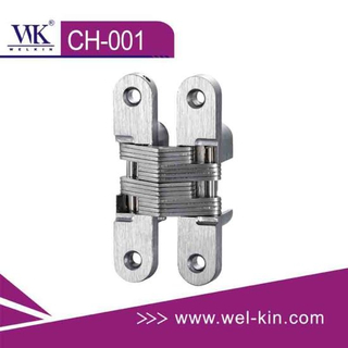 Zinc Alloy Concealed Hinge (CH-001)